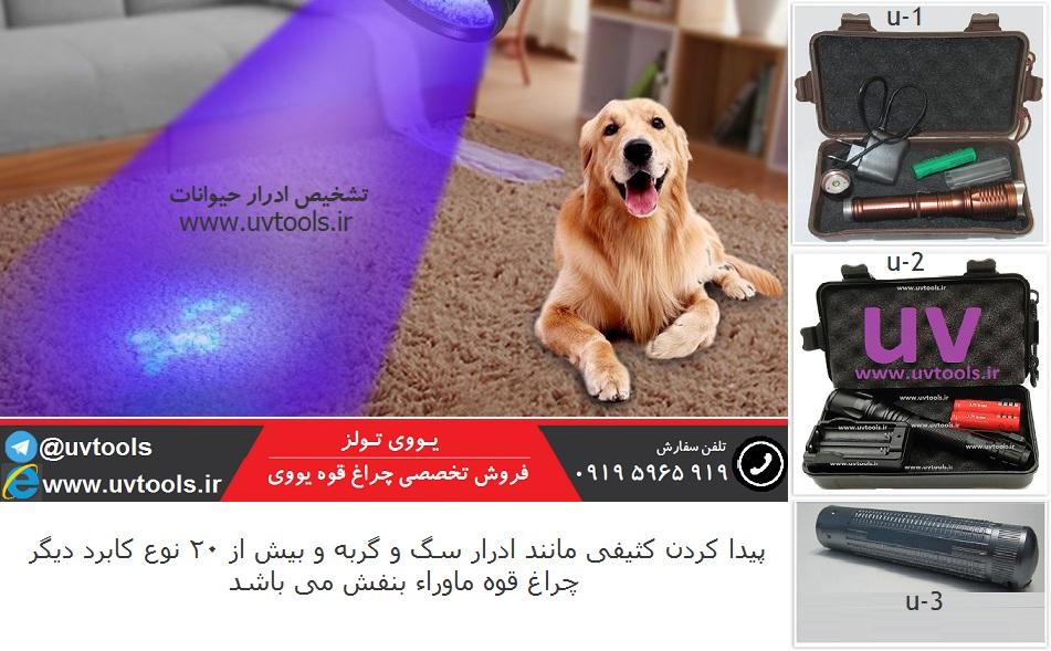 سایت یو وی تولز ( www.uvtools.ir) ؛ فروش چراغ قوه UV ؛ چراغ قوه UV تشخیص ادرار سگ و گربه | فروشگاه تخصصی چراغ قوه ؛ چراغ قوه ، خرید چراغ قوه ، فروش فروشگاه چراغ قوه