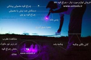 سایت یو وی تولز ( www.uvtools.ir) ؛ سایت تخصصی عقرب ؛ عقرب ها : چراغ قوه شکار و دفع عقرب | چراغ قوه صید عقرب | شکار عقرب | چراغ قوه عقرب